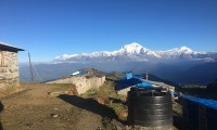 Mt: Dhaulagiri from Khopra Dada