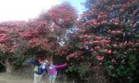 Gurung hill